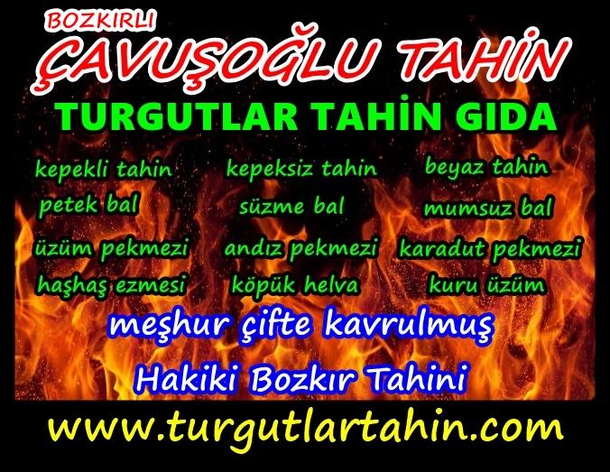 tahin.ateş